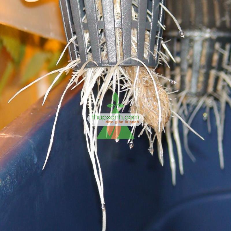 Rọ trồng thủy canh. Rọ nhựa thủy canh