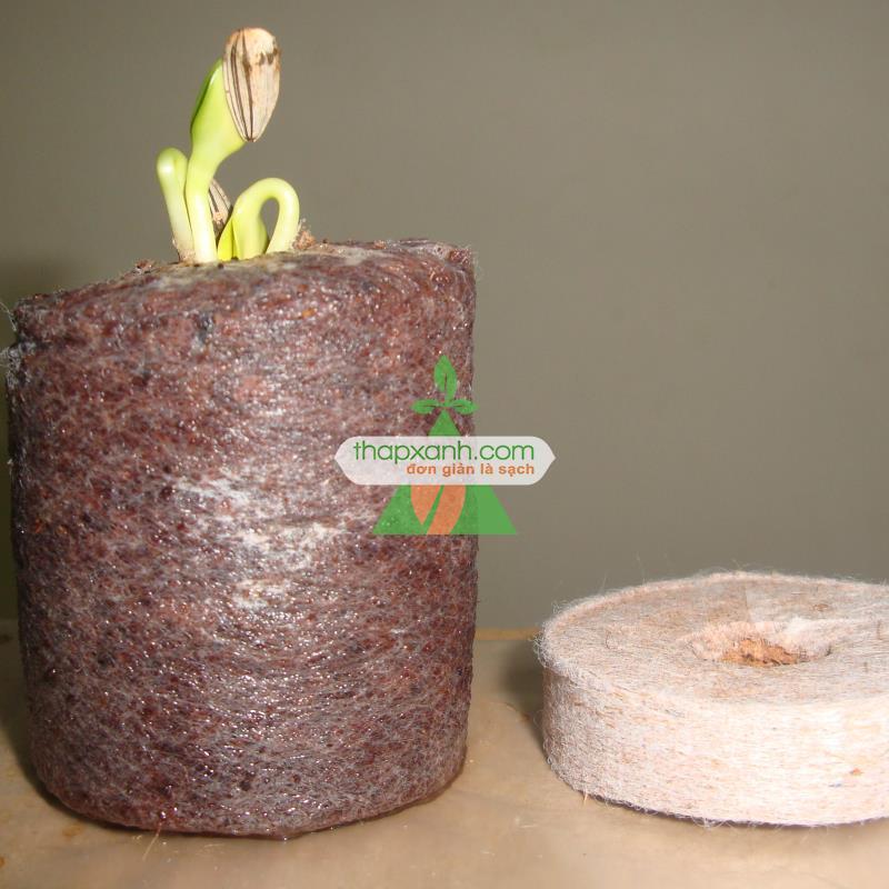 Viên nén xơ dừa ươm cây (Viên nén ươm hạt) Thùng 1000 viên