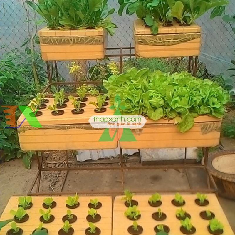 Thùng trồng rau thủy canh (đầy đủ)