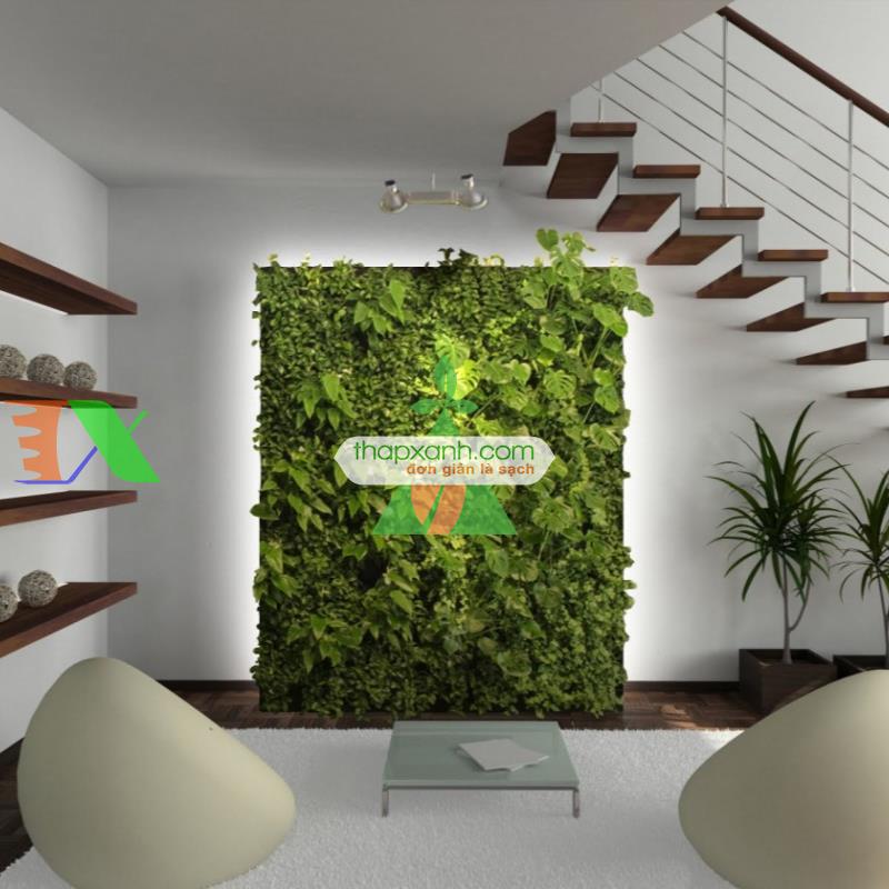 Lắp đặt thi công vườn trên tường