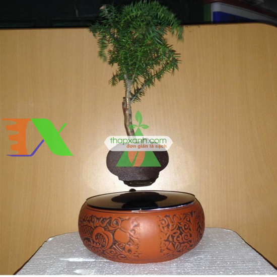 Ảnh của Chậu cây bay (Air bonsai) (sứ, TX_AB006)
