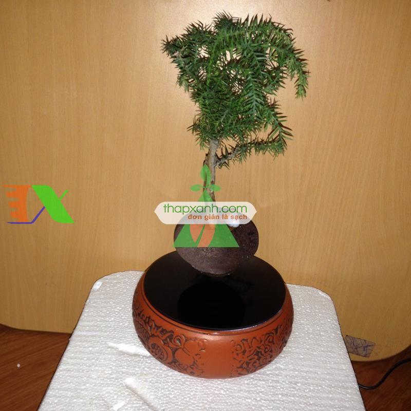 Chậu cây bay (Air bonsai) (sứ, TX_AB003)