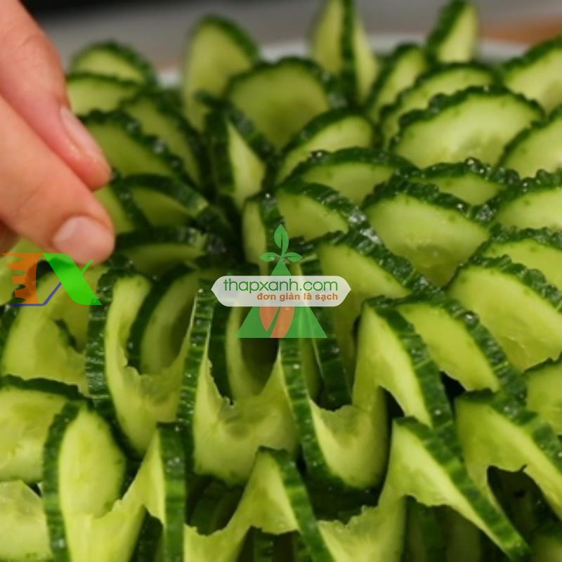 Hạt giống Dưa Chuột Gai, dưa leo (TQ)