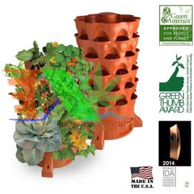 Ảnh của Tháp rau, tháp trồng rau, tháp rau ECO (Green tower)