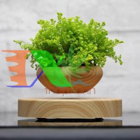 Ảnh của Chậu cây bay (Air bonsai) (gỗ)