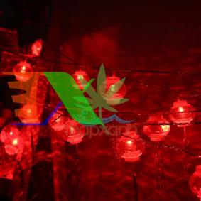 Ảnh của Đèn lồng trang trí nhấp nháy, đèn led trang trí led dây