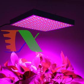 Picture of Đèn Led trồng cây đủ phổ GC-45W, Đèn led hỗ trợ trồng cây trong nhà, Led grow light