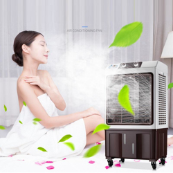 Picture for category Electric fan, air conditioner fan