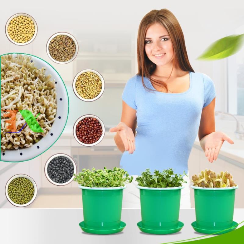 Khay trồng rau mầm thủy canh chuyên dụng (xanh)