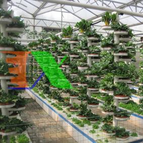 Ảnh của Tầng thủy canh tổ ong TTC-50.7, Thớt trồng thủy canh, tầng trồng thủy canh trụ đứng, Tầng khí canh