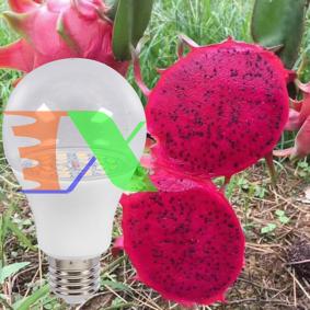Picture of Đèn trồng cây Thanh Long DRG-15W, Đèn led xông Thanh Long, Đèn chiếu sáng Thanh Long