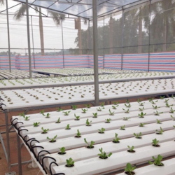 Picture for category NTF hydroponics pipe