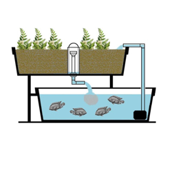 Picture for category Aquaponics