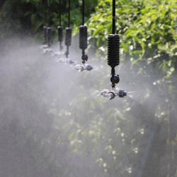Hình ảnh cho danh mục Tưới phun sương, phun mưa