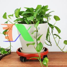 Ảnh của Giá để chậu hoa bằng nhựa TDN-40 cm, Kệ để chậu cây cảnh 4 bánh, Đế chậu cây có bánh xe lăn