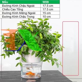 Picture of Chậu 2 lớp trồng Hoa Cây cảnh để bàn W09, Bể 2 đáy chứa nước nuôi cá, Cốc trồng cây tự hút nước