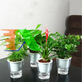 Picture of Chậu 2 lớp trồng Hoa Cây cảnh để bàn W05, Bể 2 đáy chứa nước nuôi cá, Cốc trồng cây tự hút nước