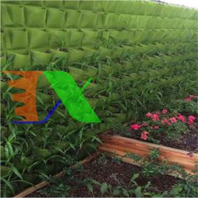 Ảnh của Túi trồng cây treo tường 49 hốc, Túi làm vườn tường trang trí, Túi trồng hoa, rau, cây cảnh
