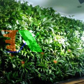 Ảnh của Túi trồng cây treo tường 25 hốc, Túi làm vườn tường trang trí, Túi trồng hoa, rau, cây cảnh