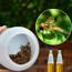 Ảnh của Thuốc bẫy Ruồi vàng BR-TH, Thuốc dẫn dụ Ruồi Muỗi Ong, Thuốc hấp dẫn côn trùng