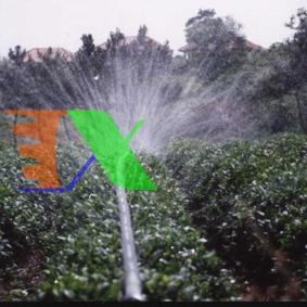 Ảnh của Dây tưới phun mưa Micro spray tube N32.20, Dây tưới phun mưa PE mềm dày 0.2 mm 5 mắt
