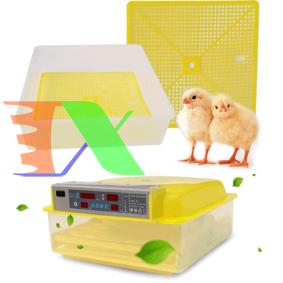 Ảnh của Máy ấp trứng tự động, Máy ấp trứng hẹn giờ, Ấp trứng Gà, Vịt, Bồ câu, Chim cút