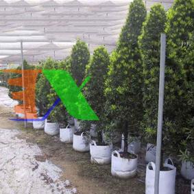 Ảnh của Túi trồng cây 2 quai Φ30*H25, Túi trồng cây công trình bằng Vải địa kỹ thuật không dệt