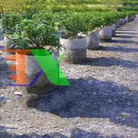 Ảnh của Túi trồng cây 2 quai Φ45*H40, Túi trồng cây công trình bằng Vải địa kỹ thuật không dệt