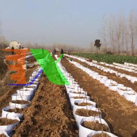 Ảnh của Túi trồng cây 2 quai Φ50*H40, Túi trồng cây công trình bằng Vải địa kỹ thuật không dệt