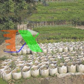 Ảnh của Túi trồng cây 2 quai Φ70*H50, Túi trồng cây công trình bằng Vải địa kỹ thuật không dệt