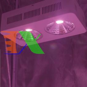 Picture of Đèn Led trồng cây đủ phổ COB-2, Đèn led hỗ trợ trồng cây trong nhà, Led grow light