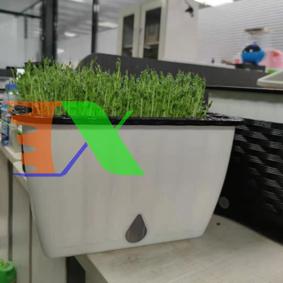 Picture of Khay trồng rau 2 lớp tự tưới KR-32, Chậu trồng rau thông minh có đáy chứa nước