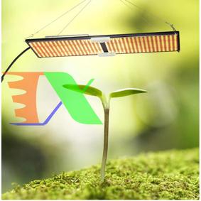 Ảnh của Đèn trồng cây Lượng tử QBS2000, Led grow lights chip Samsung 2000W, Đèn trồng rau trong nhà