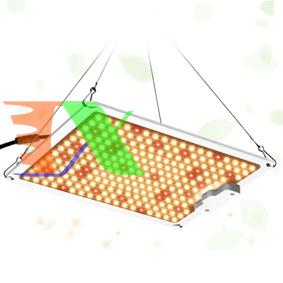 Ảnh của Đèn trồng cây Lượng tử QBC1000, Led grow lights chip Samsung 1000W, Đèn trồng rau trong nhà
