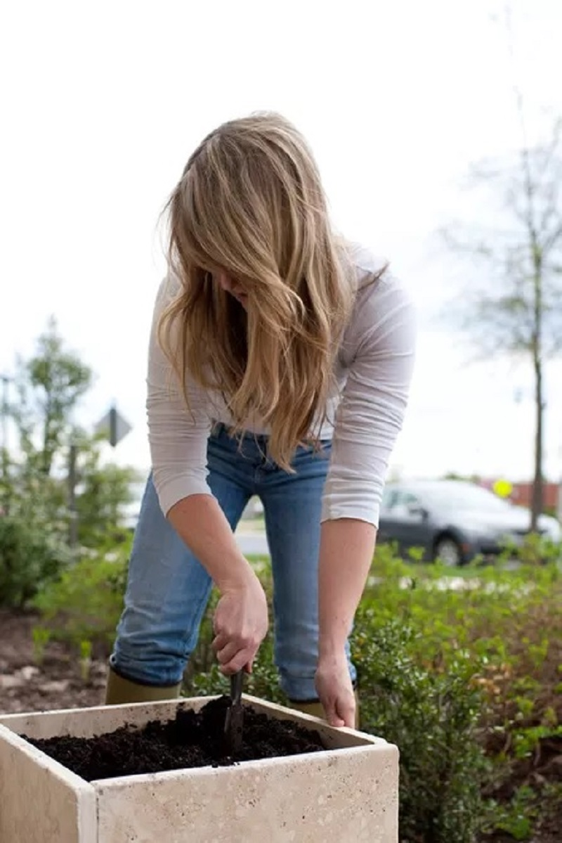 Thiết Bị Phun Sương【 Nhà Phân Phối Sỉ & Lẻ Thiết Bị Phun Sương】 25 Mô hình vườn tự làm bất cứ ai cũng có thể làm DIY out door